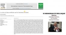 Teta Salınımı, Beyindeki Teta Sistemi, Bilgi İşlemleme İle İlişkiler